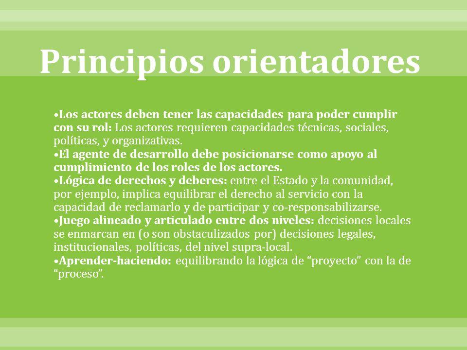 Principios orientadores Los actores deben tener las capacidades para poder cumplir con su rol: Los actores requieren capacidades técnicas, sociales, políticas, y organizativas.