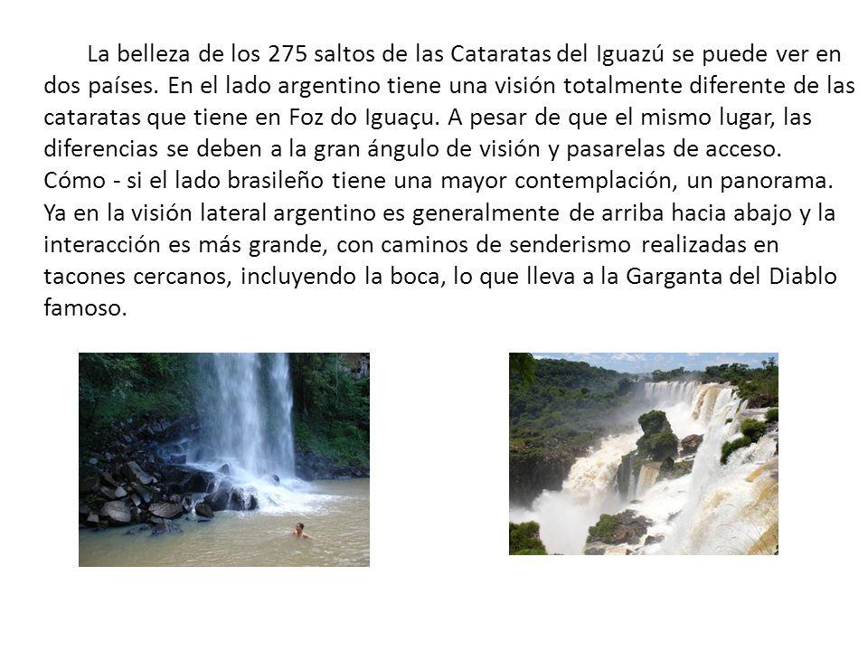 La belleza de los 275 saltos de las Cataratas del Iguazú se puede ver en dos países. En el lado argentino tiene una visión totalmente diferente de las