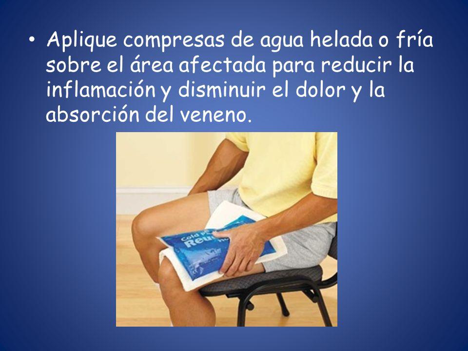 Aplique compresas de agua helada o fría sobre el área afectada para reducir la inflamación y disminuir el dolor y la absorción del veneno.
