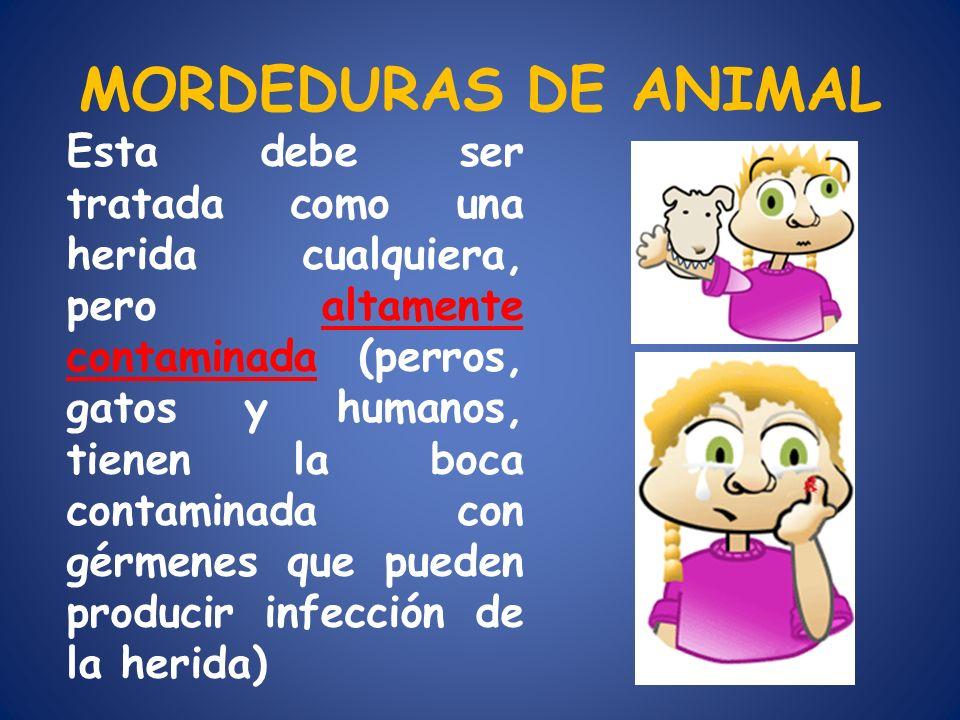 MORDEDURAS DE ANIMAL Esta debe ser tratada como una herida cualquiera, pero altamente contaminada (perros, gatos y humanos, tienen la boca contaminada