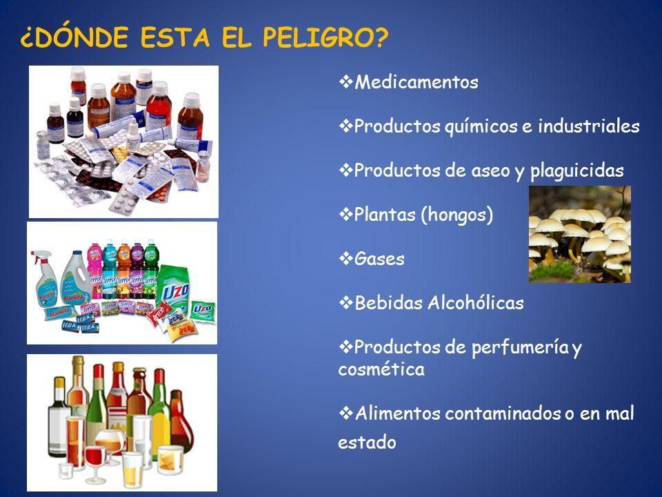 Medicamentos Productos químicos e industriales Productos de aseo y plaguicidas Plantas (hongos) Gases Bebidas Alcohólicas Productos de perfumería y co