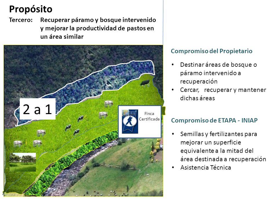 Propósito Tercero: Recuperar páramo y bosque intervenido y mejorar la productividad de pastos en un área similar Si el propietario trabaja en bosque d