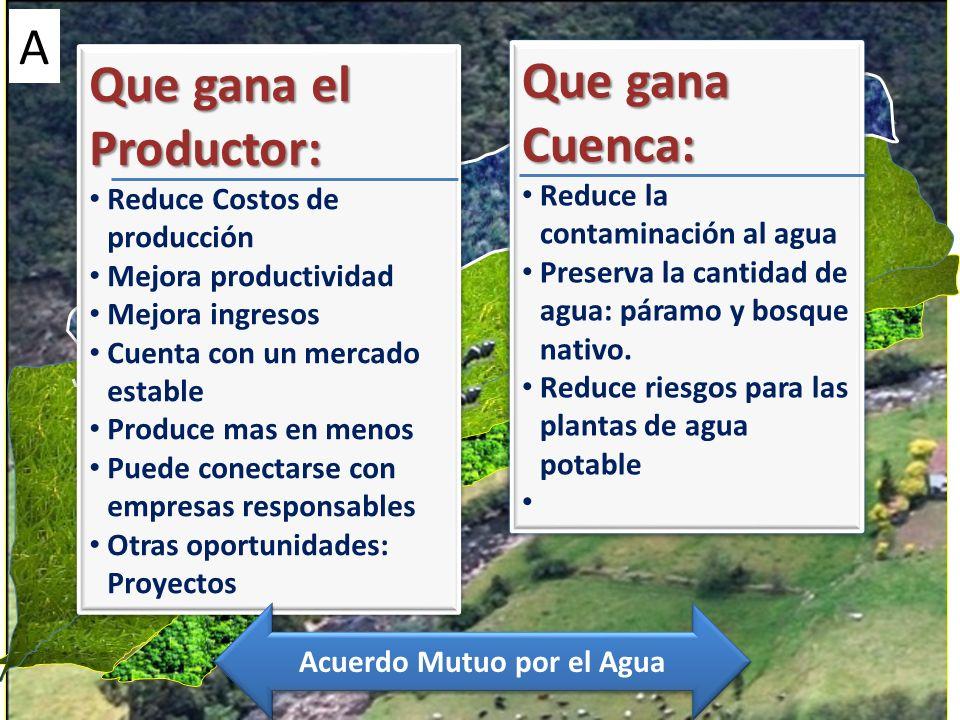 Que gana el Productor: Reduce Costos de producción Mejora productividad Mejora ingresos Cuenta con un mercado estable Produce mas en menos Puede conec