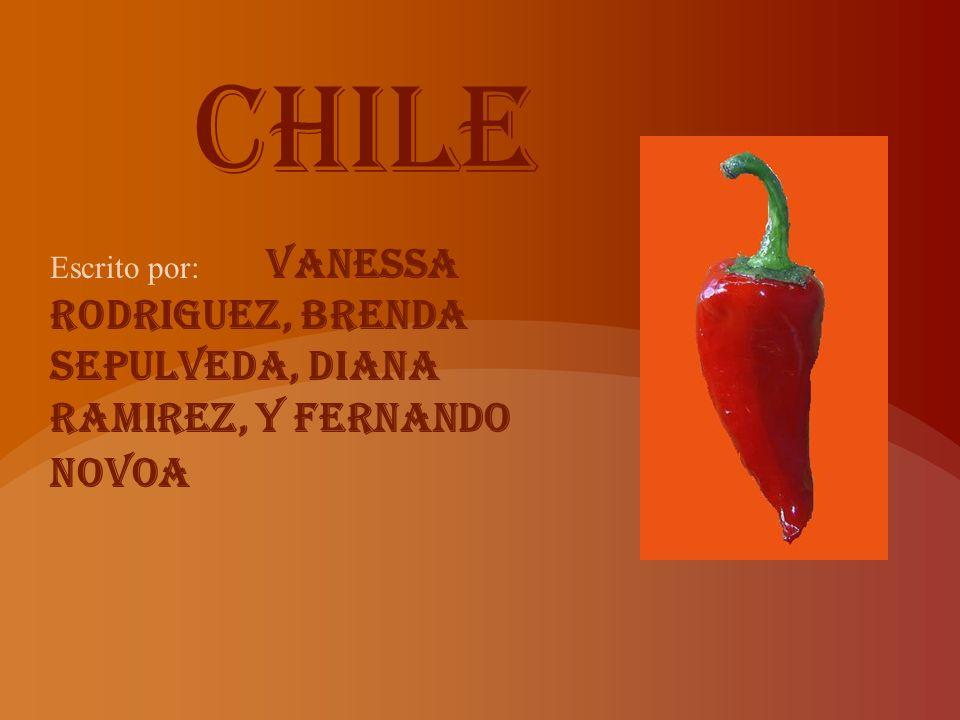 Tradicion en Chile celebraciones