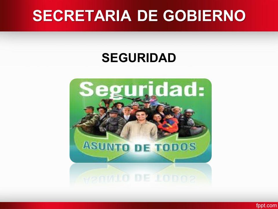 SEGURIDAD SECRETARIA DE GOBIERNO