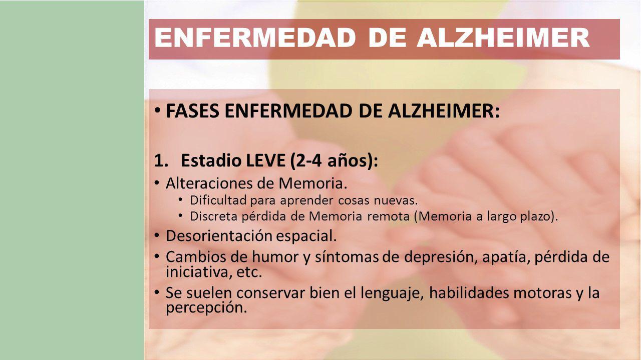 FASES ENFERMEDAD DE ALZHEIMER: 1.Estadio LEVE (2-4 años): Alteraciones de Memoria.