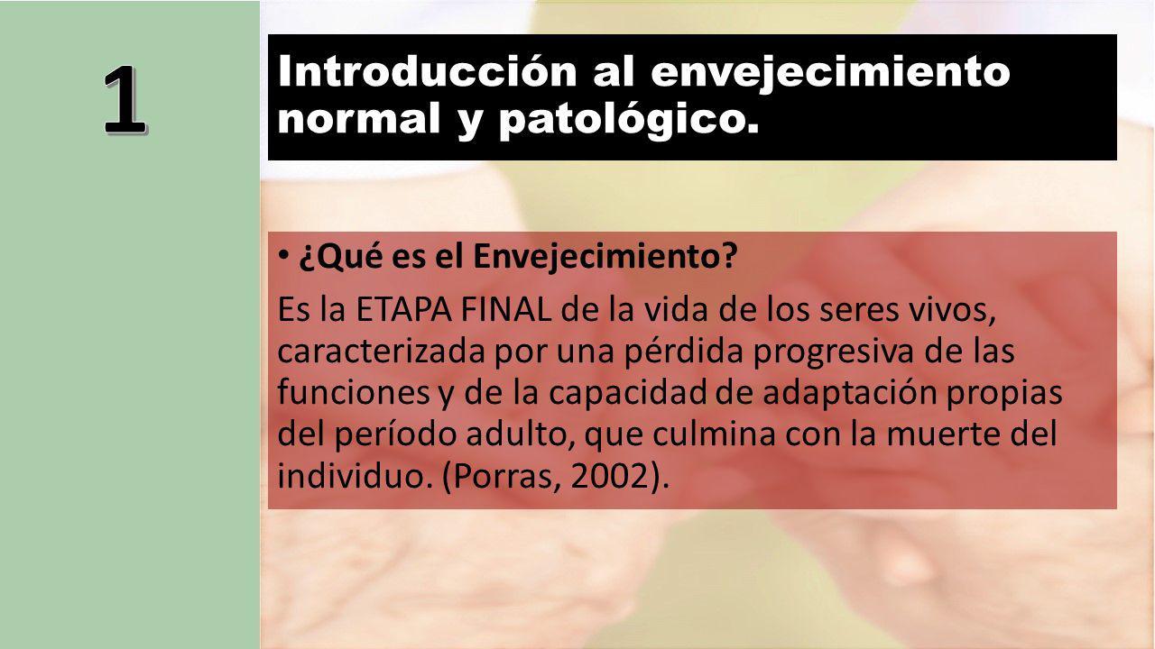Introducción al envejecimiento normal y patológico.
