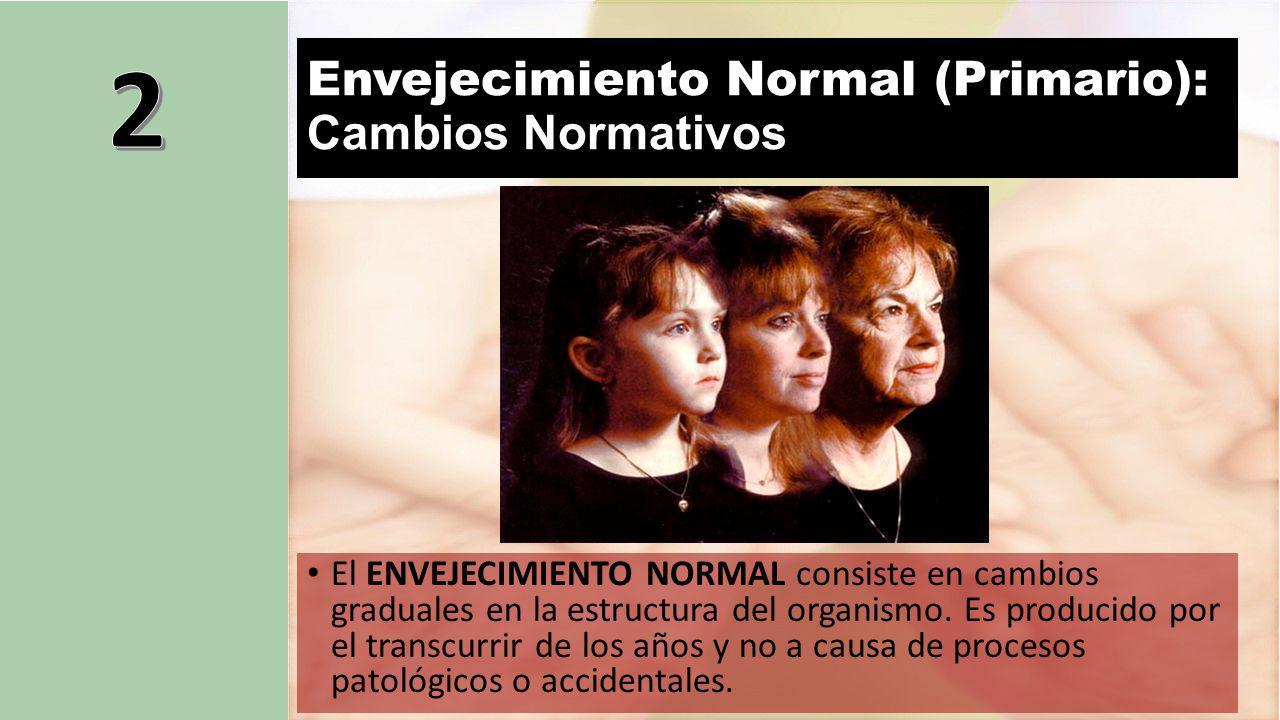 Envejecimiento Normal (Primario): Cambios Normativos El ENVEJECIMIENTO NORMAL consiste en cambios graduales en la estructura del organismo.