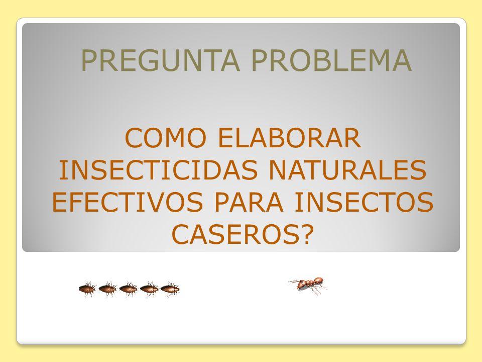 PREGUNTA PROBLEMA COMO ELABORAR INSECTICIDAS NATURALES EFECTIVOS PARA INSECTOS CASEROS?