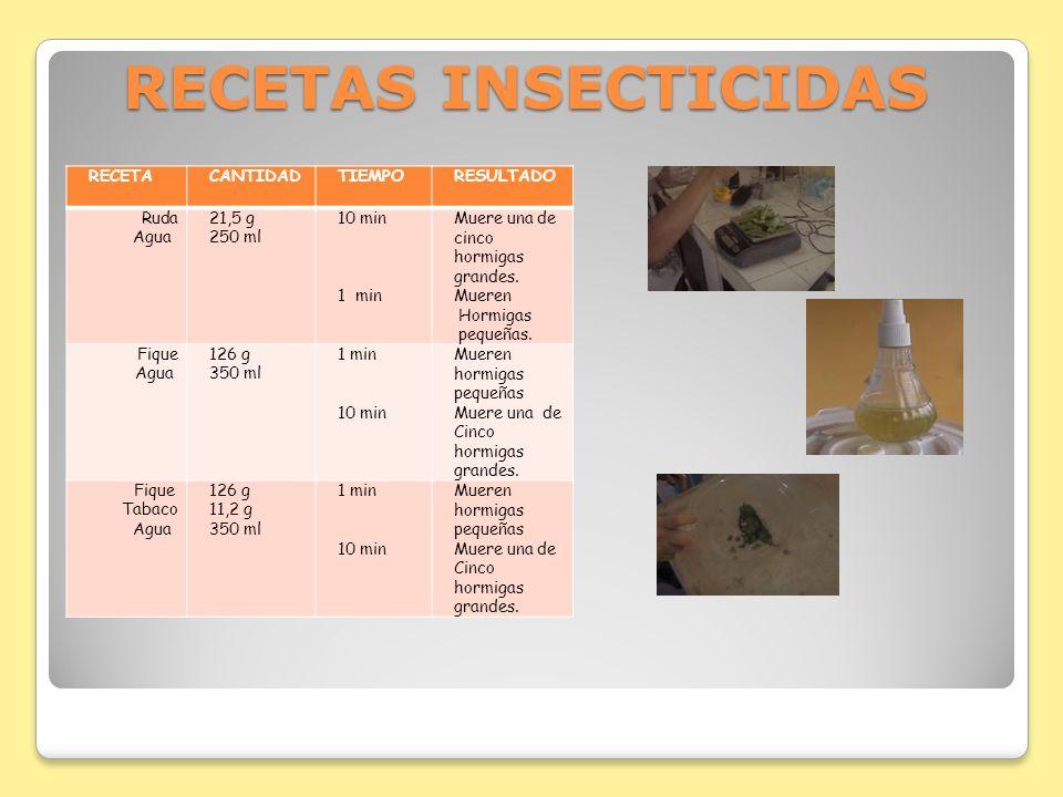 RECETAS INSECTICIDAS RECETACANTIDADTIEMPORESULTADO Ruda Agua 21,5 g 250 ml 10 min 1 min Muere una de cinco hormigas grandes. Mueren Hormigas pequeñas.