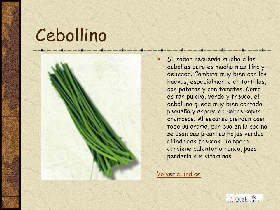 Cebollino Su sabor recuerda mucho a las cebollas pero es mucho más fino y delicado. Combina muy bien con los huevos, especialmente en tortillas, con p