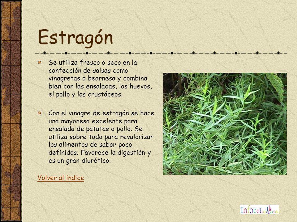 Estragón Se utiliza fresco o seco en la confección de salsas como vinagretas o bearnesa y combina bien con las ensaladas, los huevos, el pollo y los c