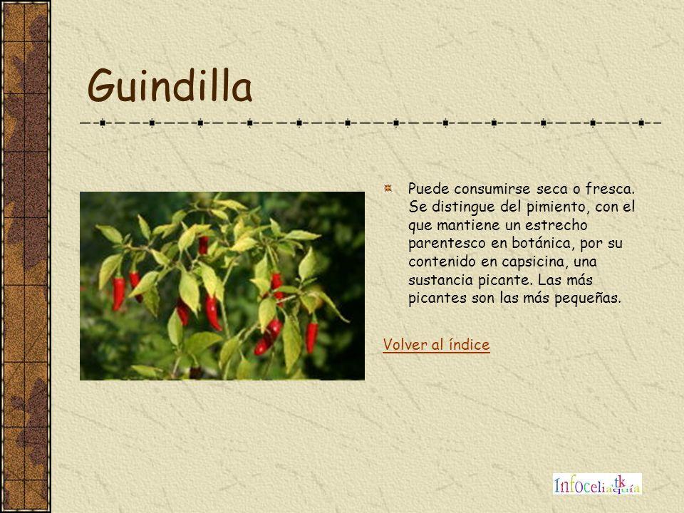 Guindilla Puede consumirse seca o fresca. Se distingue del pimiento, con el que mantiene un estrecho parentesco en botánica, por su contenido en capsi