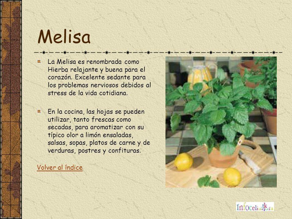 Melisa La Melisa es renombrada como Hierba relajante y buena para el corazón. Excelente sedante para los problemas nerviosos debidos al stress de la v