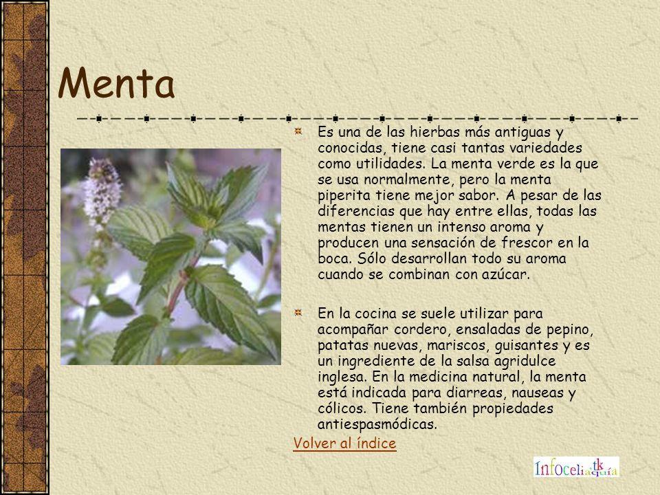 Menta Es una de las hierbas más antiguas y conocidas, tiene casi tantas variedades como utilidades. La menta verde es la que se usa normalmente, pero