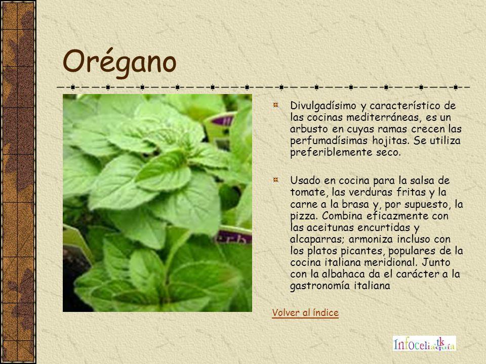 Orégano Divulgadísimo y característico de las cocinas mediterráneas, es un arbusto en cuyas ramas crecen las perfumadísimas hojitas. Se utiliza prefer