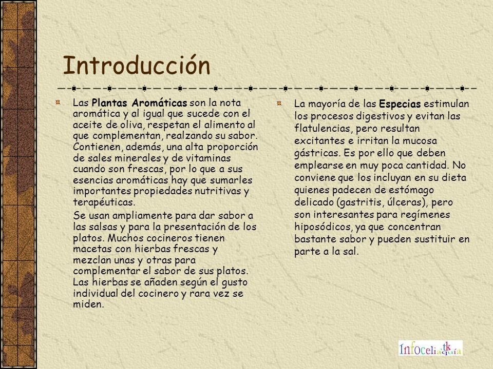 Introducción Las Plantas Aromáticas son la nota aromática y al igual que sucede con el aceite de oliva, respetan el alimento al que complementan, real