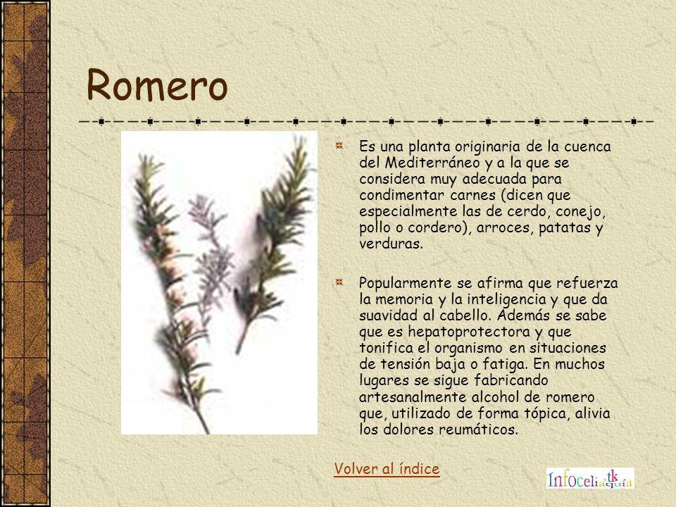 Romero Es una planta originaria de la cuenca del Mediterráneo y a la que se considera muy adecuada para condimentar carnes (dicen que especialmente la