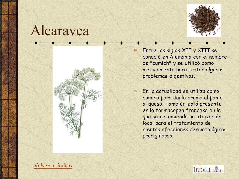 Alcaravea Entre los siglos XII y XIII se conoció en Alemania con el nombre de