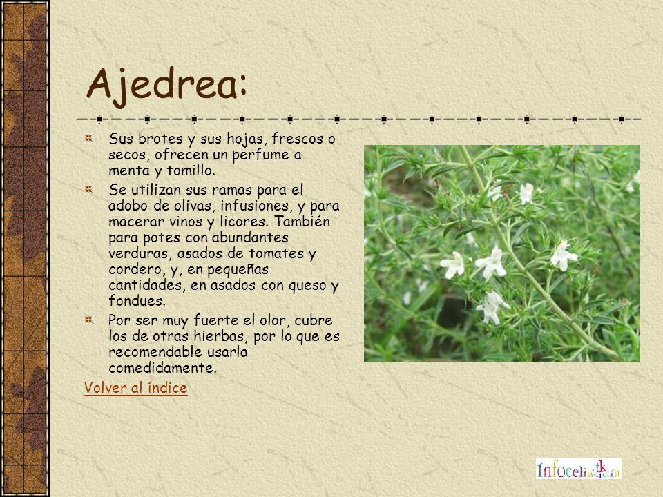 Ajedrea: Sus brotes y sus hojas, frescos o secos, ofrecen un perfume a menta y tomillo. Se utilizan sus ramas para el adobo de olivas, infusiones, y p