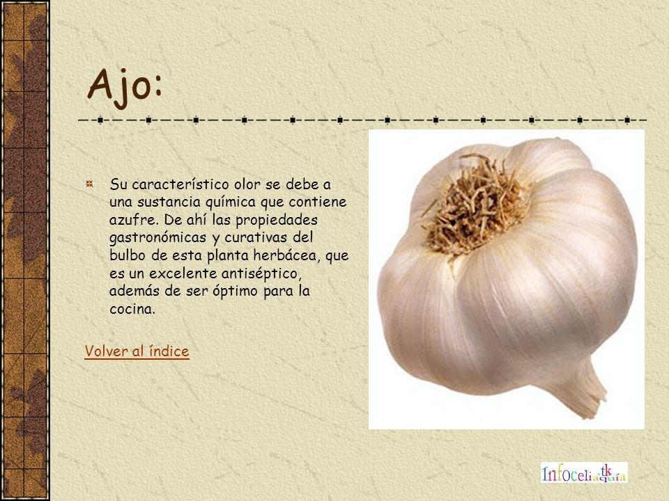Albahaca: Esta planta originaria de Cerdeña es muy apreciada por provenzales e italianos que la toman fresca.
