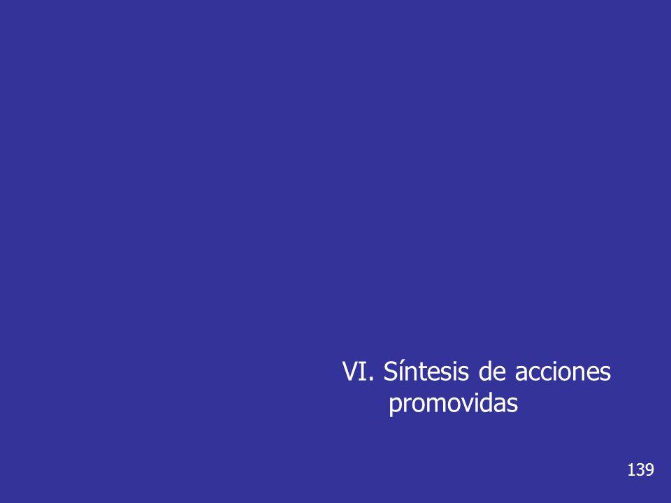 VI. Síntesis de acciones promovidas 139