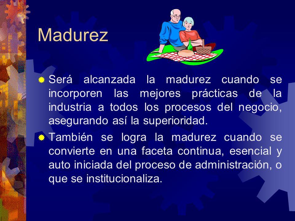 Madurez Será alcanzada la madurez cuando se incorporen las mejores prácticas de la industria a todos los procesos del negocio, asegurando así la super