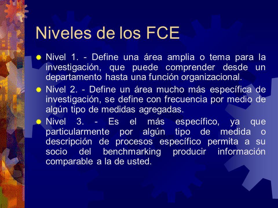 Niveles de los FCE Nivel 1. - Define una área amplia o tema para la investigación, que puede comprender desde un departamento hasta una función organi