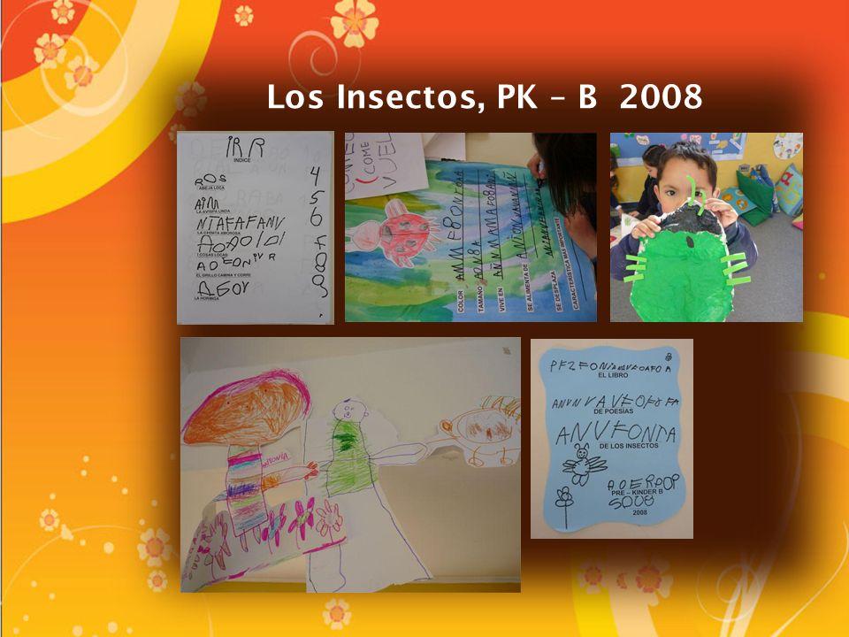 Los Insectos, PK – B 2008