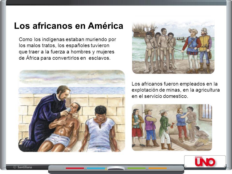 Como los indígenas estaban muriendo por los malos tratos, los españoles tuvieron que traer a la fuerza a hombres y mujeres de África para convertirlos