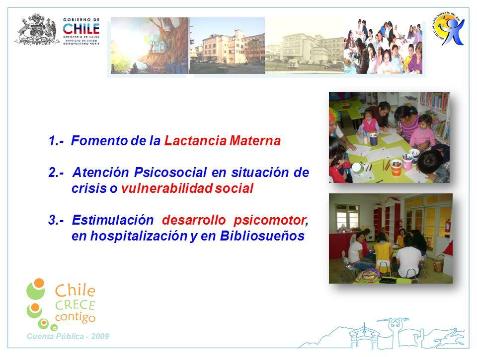 1.- Fomento de la Lactancia Materna 2.- Atención Psicosocial en situación de crisis o vulnerabilidad social 3.- Estimulación desarrollo psicomotor, en