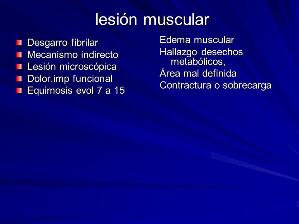 lesión muscular Edema muscular Hallazgo desechos metabólicos, Área mal definida Contractura o sobrecarga, Desgarro fibrilar Mecanismo indirecto Lesión