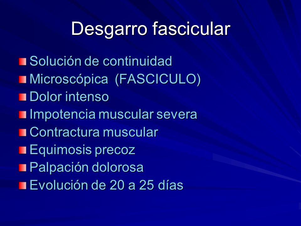 Desgarro fascicular Solución de continuidad Microscópica (FASCICULO) Dolor intenso Impotencia muscular severa Contractura muscular Equimosis precoz Pa