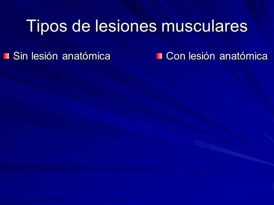 Tipos de lesiones musculares Sin lesión anatómica Con lesión anatómica