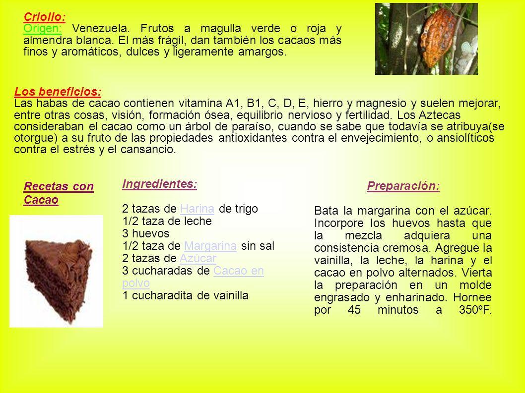 Criollo: Origen: Venezuela. Frutos a magulla verde o roja y almendra blanca. El más frágil, dan también los cacaos más finos y aromáticos, dulces y li