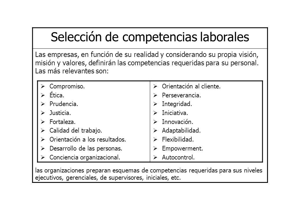 Selección de competencias laborales Las empresas, en función de su realidad y considerando su propia visión, misión y valores, definirán las competenc