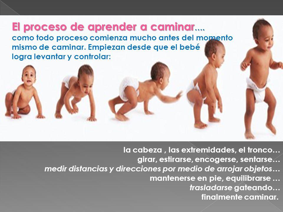 Una de las creencias más grandes es que el bebé empieza a caminar a los 7 meses y otra es que los adultos deciden cuándo es momento que los bebés o niños deban hacer o aprender.