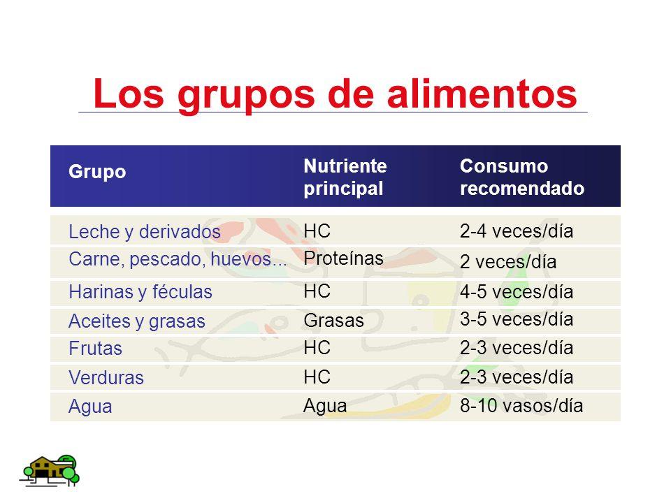 Los grupos de alimentos Grupo Leche y derivados Carne, pescado, huevos... Harinas y féculas Aceites y grasas Frutas Verduras Agua Nutriente principal
