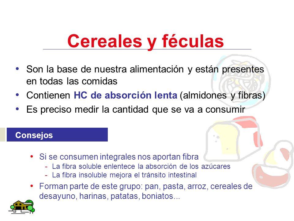 Cereales y féculas Son la base de nuestra alimentación y están presentes en todas las comidas Contienen HC de absorción lenta (almidones y fibras) Es