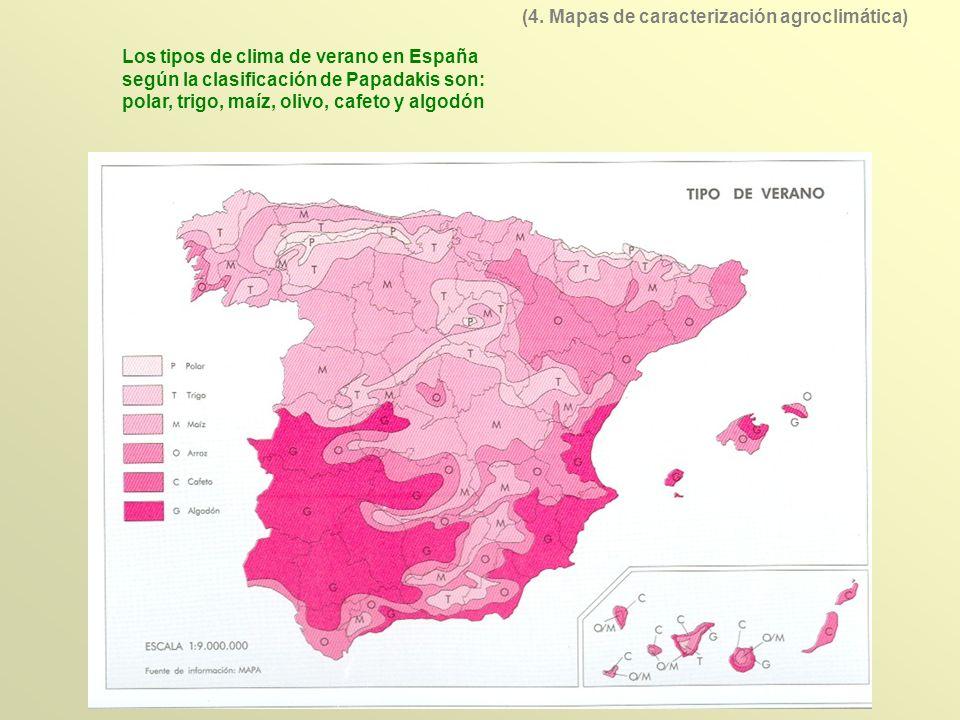 Los tipos de clima de verano en España según la clasificación de Papadakis son: polar, trigo, maíz, olivo, cafeto y algodón (4. Mapas de caracterizaci