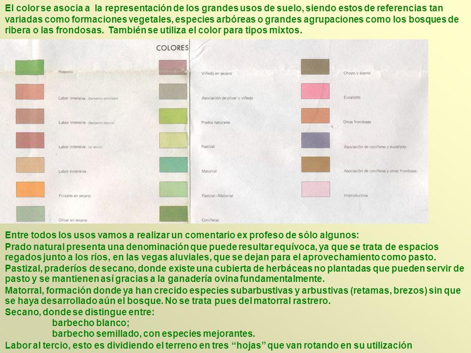 El color se asocia a la representación de los grandes usos de suelo, siendo estos de referencias tan variadas como formaciones vegetales, especies arb