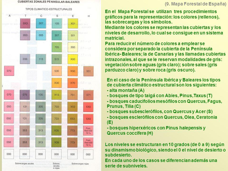 En el Mapa Forestal se utilizan tres procedimientos gráficos para la representación: los colores (rellenos), las sobrecargas y los símbolos. Mediante
