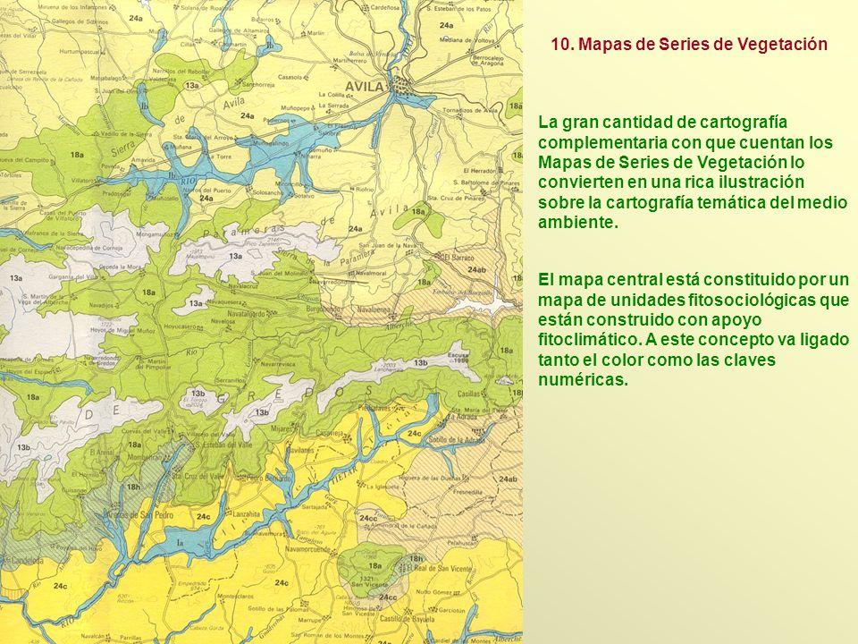 La gran cantidad de cartografía complementaria con que cuentan los Mapas de Series de Vegetación lo convierten en una rica ilustración sobre la cartog