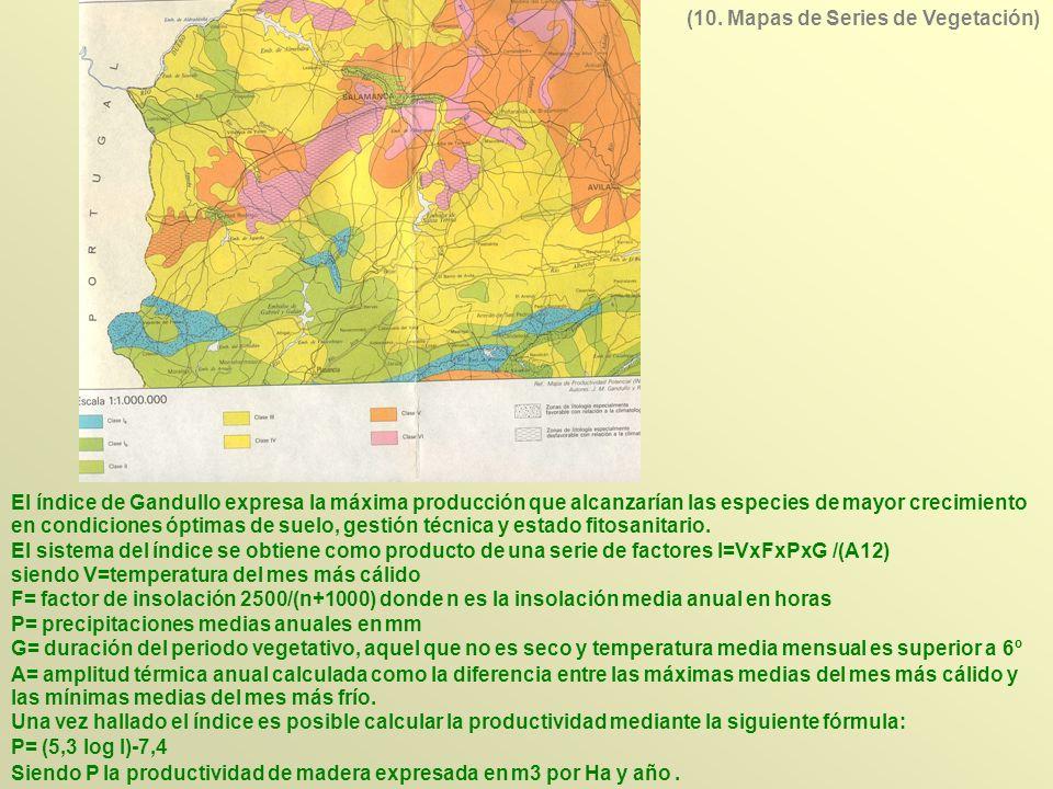 El índice de Gandullo expresa la máxima producción que alcanzarían las especies de mayor crecimiento en condiciones óptimas de suelo, gestión técnica