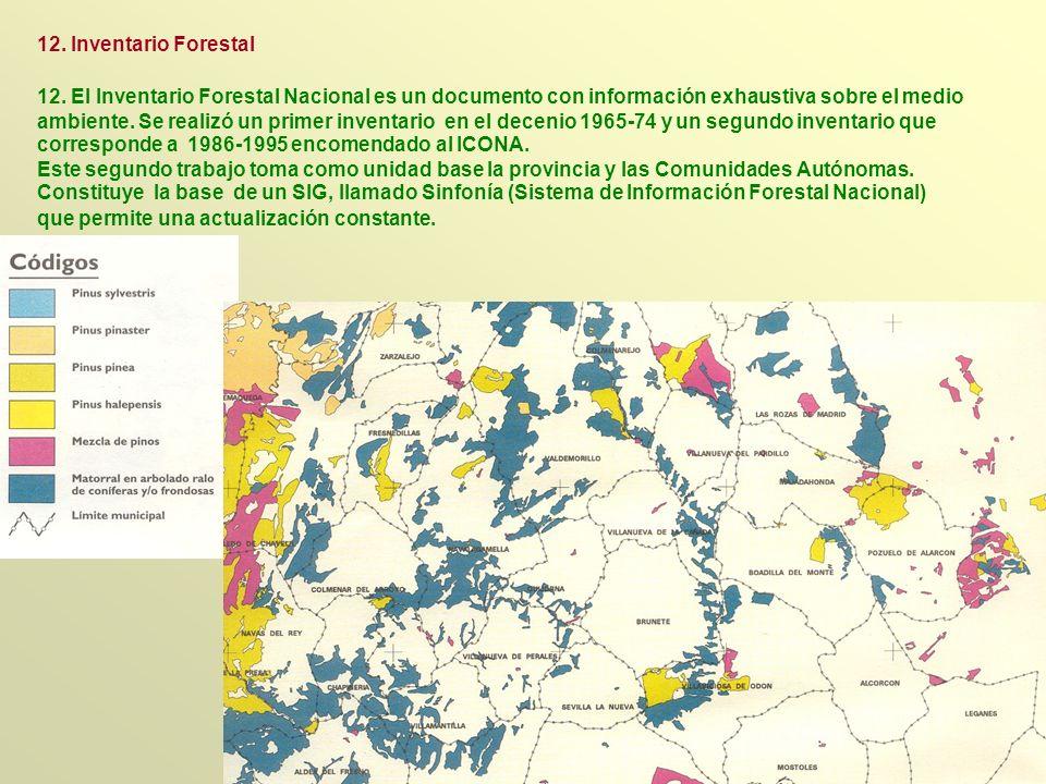 12. El Inventario Forestal Nacional es un documento con información exhaustiva sobre el medio ambiente. Se realizó un primer inventario en el decenio