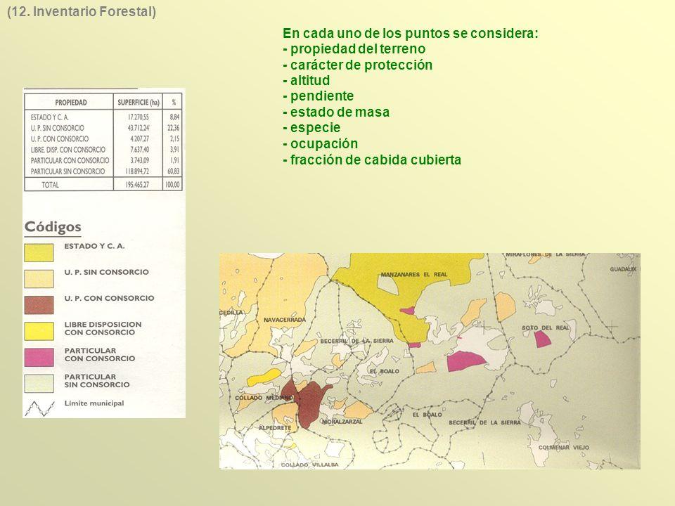 En cada uno de los puntos se considera: - propiedad del terreno - carácter de protección - altitud - pendiente - estado de masa - especie - ocupación