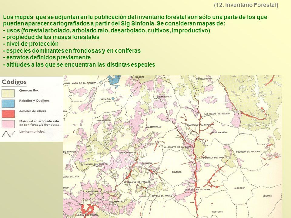 Los mapas que se adjuntan en la publicación del inventario forestal son sólo una parte de los que pueden aparecer cartografiados a partir del Sig Sinf