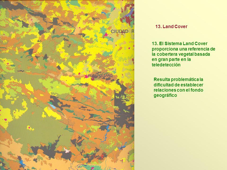 13. El Sistema Land Cover proporciona una referencia de la cobertera vegetal basada en gran parte en la teledetección 13. Land Cover Resulta problemát