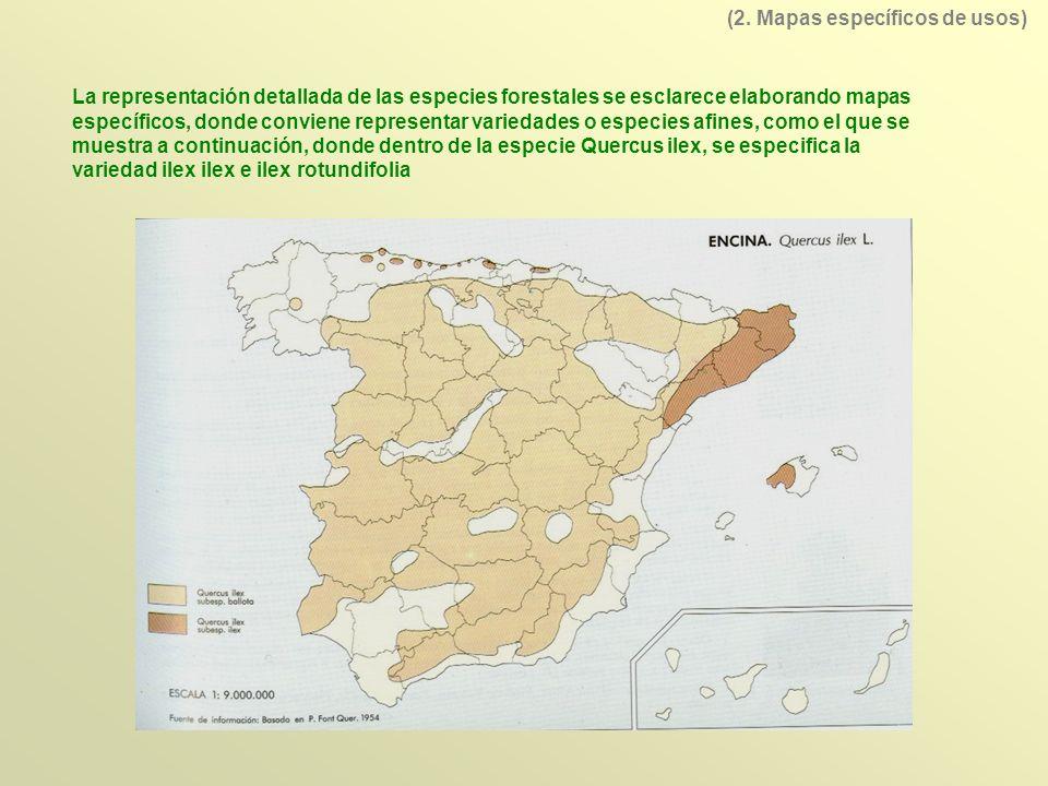 La representación detallada de las especies forestales se esclarece elaborando mapas específicos, donde conviene representar variedades o especies afi