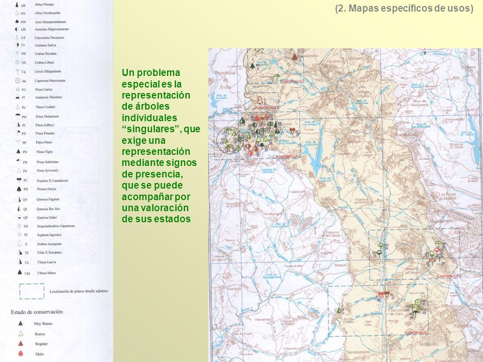 Los principales mapas relativos a la vegetación y usos del suelo son los siguientes: -Mapa de Clases Agrológicas, a escala 1/50.000, con una importancia menor por el escaso número de hojas publicadas - el Mapa de Cultivos y Aprovechamientos a escala 1/50.000 - el Mapa Forestal de España a escala 1/200.000 - el Mapa Agronómico Nacional a escala 1/200.000 - el Mapa de Series de Vegetación a escala 1/400.000 - el Inventario Forestal con mapas derivados del SIG incorporado denominado Sinfonia - el Sistema Land Cover 6..10 Cartografía fundamental de vegetación y usos del suelo existente en España